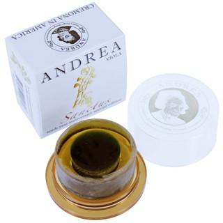 Andrea Sanctus, altvioolhars