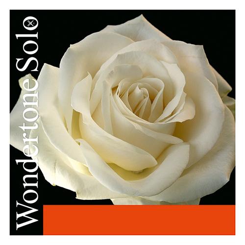 PIRASTRO Wondertone Violin E- snaar zilver met lusje
